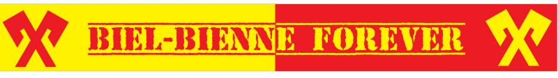 Biel-Bienne Schal 2016